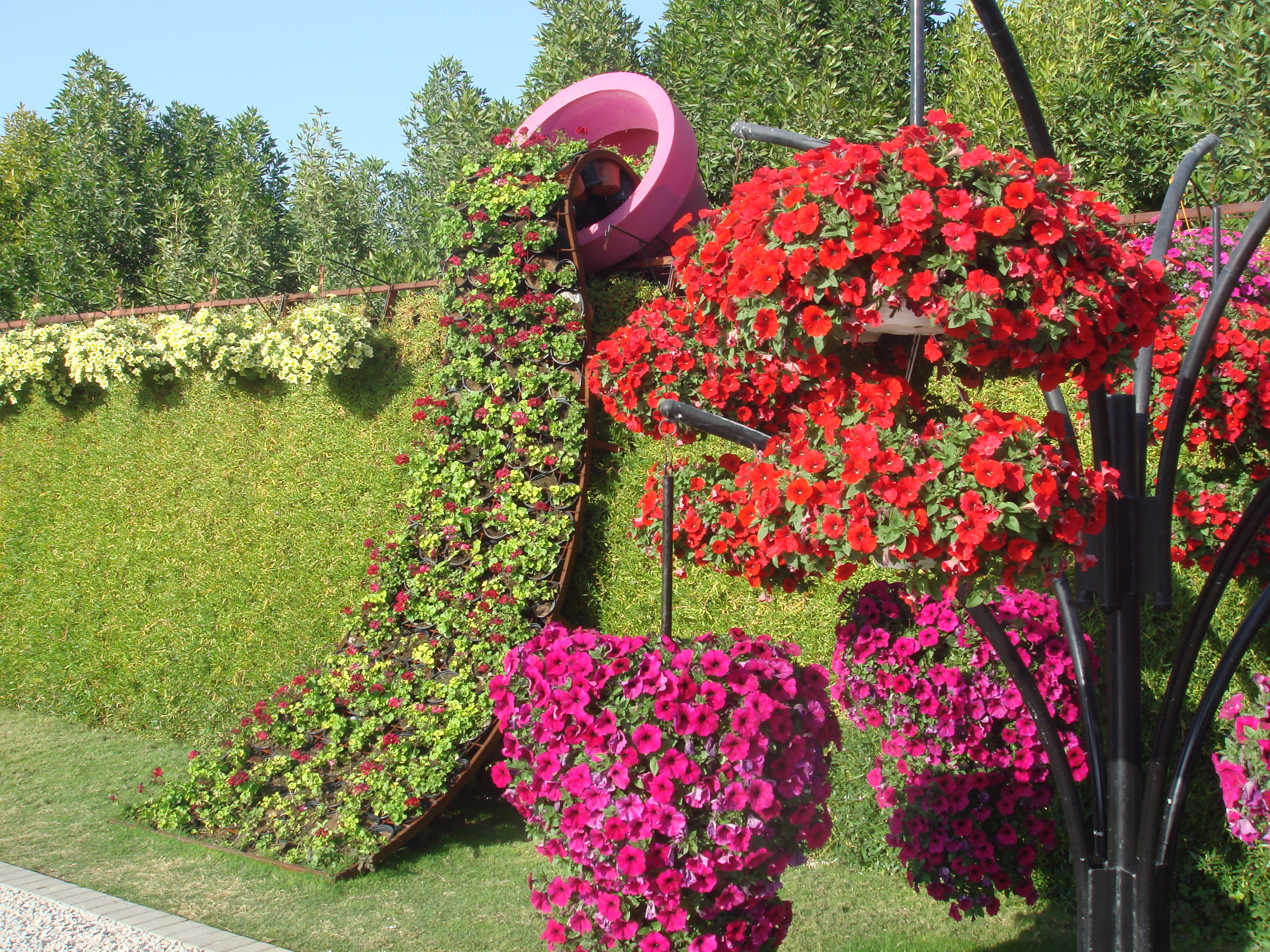 Dubai Miracle Garden and the strange lack of insects